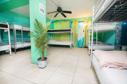 Photos Of Ith Beach Bungalow Surf Hostel