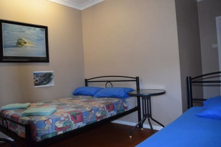Fotky Geckos Backpackers Cairns Pty Ltd