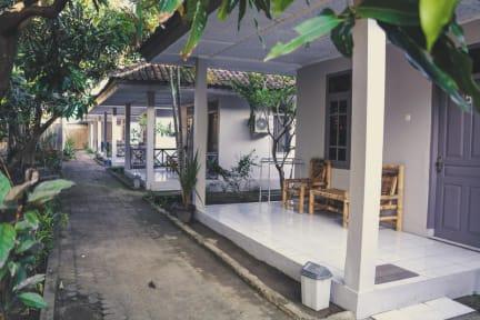 Fotos von Jungle Hotel