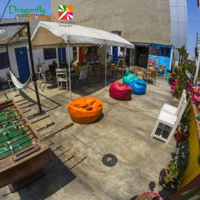 Fotos de Dragonfly Hostels